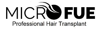 logo-microfue