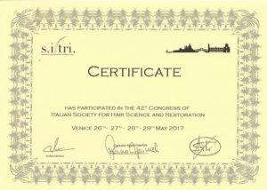 Certificado SITRI Microfue