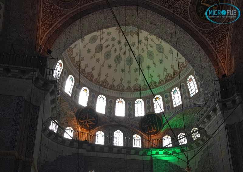mezquitas_Estambul_injerto_de_pelo_microfue
